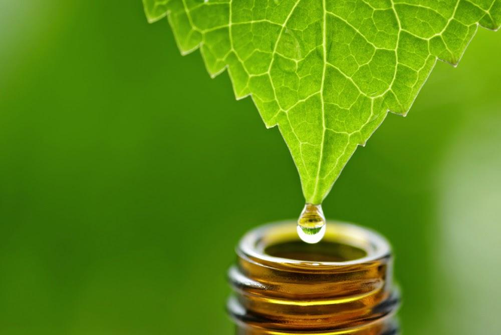 Cum functioneaza uleiurile esentiale?